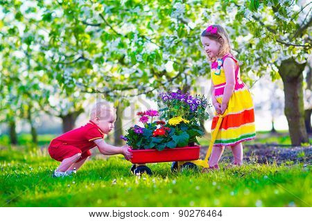 Kids In A Garden With Blooming Cherry Trees