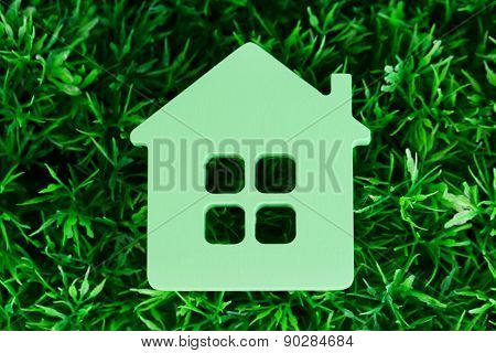 Toy house on grass close-up