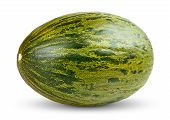 stock photo of muskmelon  - One Fresh whole Piel de sapo melon on white background - JPG