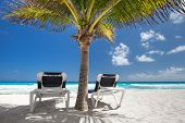 image of beachfront  - Two beach beds under palm tree on caribbean beachfront - JPG
