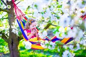 image of apple orchard  - Child relaxing in hammock - JPG