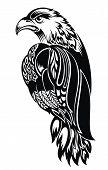 picture of eagle  - Bird symbol - JPG