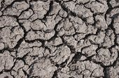 foto of drought  - Dry ground - JPG
