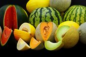 stock photo of honeydew melon  - Fresh healthy organic melons on black background - JPG