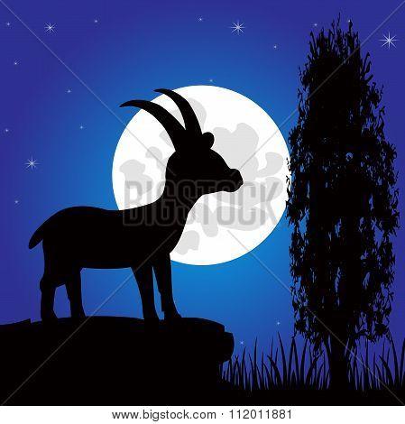 Silhouette mountain sawhorse moon in the night