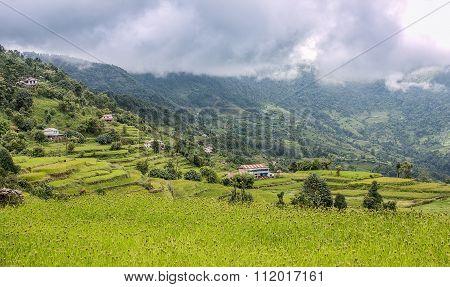 Landscape View Of Rice Terraces In Kathmandu Valley, Nepal