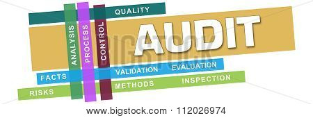 Audit Wordcloud Colorful Stripes