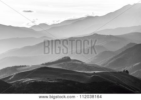 Hills Of Canterbury Near Hanmer Springs In Black And White, New Zealand