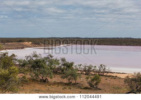 Pink Salt Lake Becking Amongst Native Australian Vegetation