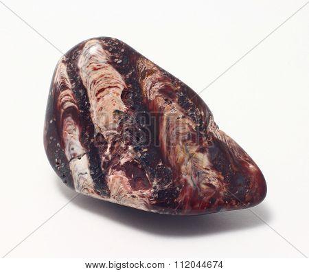 Petrified algae, Stromatolite