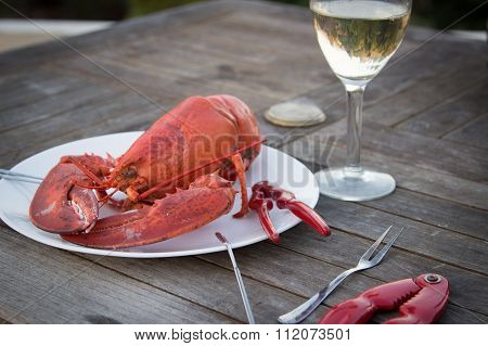 Boiled lobster ready to eat on a plate with shell crackers, pics and a glass of wine.