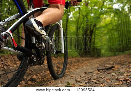 Closeup Bicyclist with His Bicycle in the Summer Forest