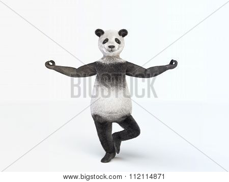 Personage Character Animal Bear Panda Standing Balanced Position