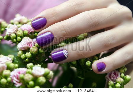 Woman Hand With Sparkle Purple Nail Design