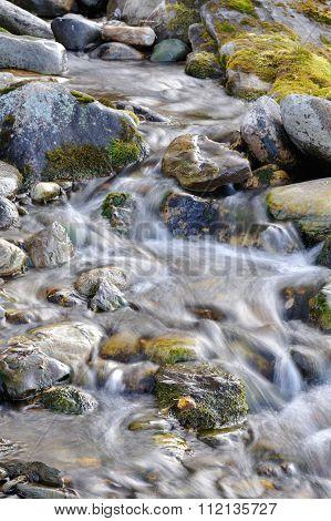 Sub-polar Mountains Creek