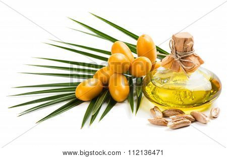 Oil Of Seed Of Dates
