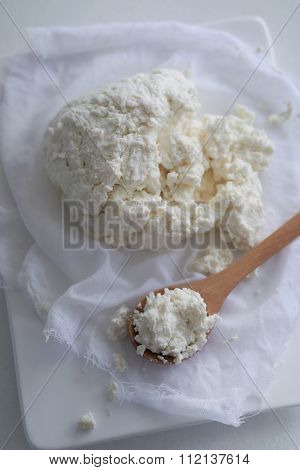Soft homemade fresh ricotta cottage cheese made from milk, draining on muslin cloth