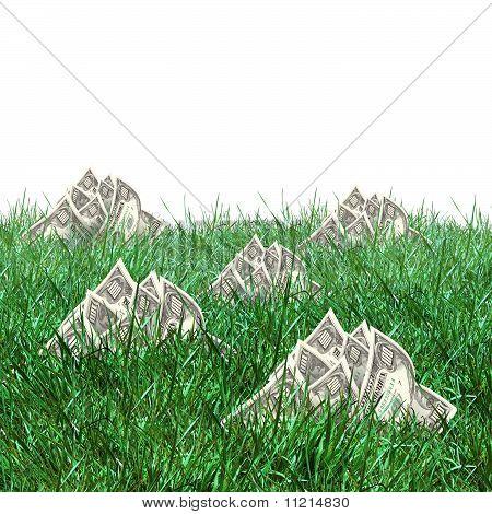 vegetation of dollar bills
