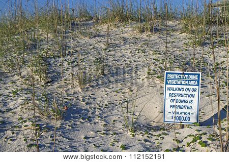 Sand Dune Protection Warning Sign On The North Carolina Coast