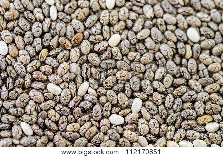 Chia Seeds Texture.