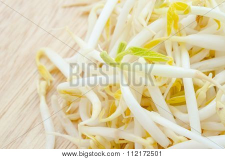 Mungbean Sprouts.