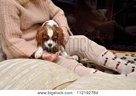 Lady And Dog  (cavalier King Charles Spaniel) By The Fireplace