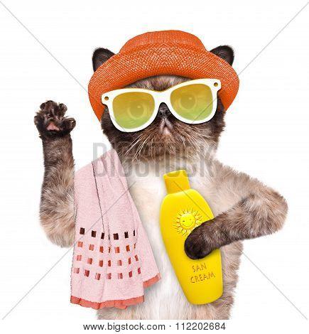 Cat with sunblock