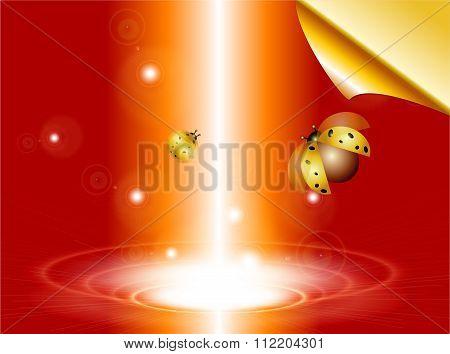 Ladybugs and Lighting.