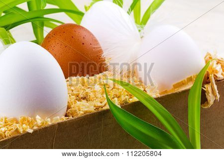 Easter Eggs In The Nest With Grass