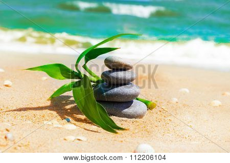 Spa Stones With Fresh Bamboo Leaves On The Sea Coast