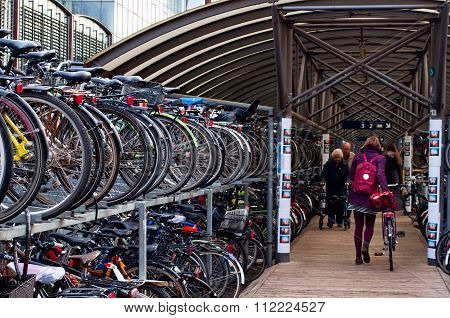 Green Transport. Tow-tiered Bike Parking