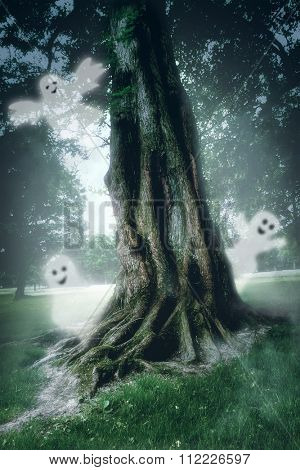 Large tree in the mist in the magic forest and ghosts