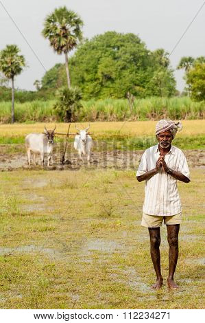 Rice Farmer Tamil Nadu, India,