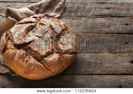 German Traditional Bred