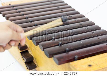The Xylophone