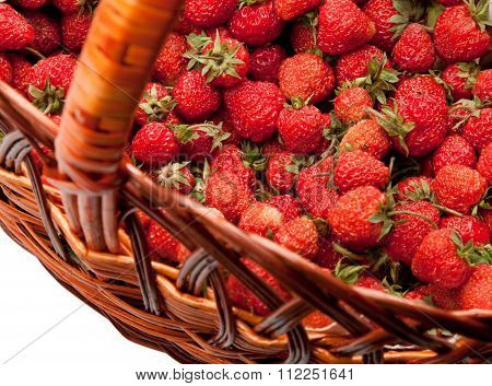 Strawberry Basket Detail