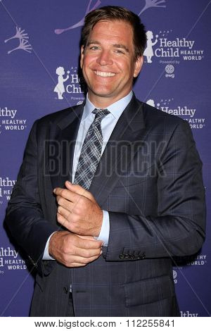LOS ANGELES - OCT 1:  Michael Weatherly at the Healthy Child Healthy World Gala at the Montage Hotel on October 1, 2015 in Beverly Hills, CA