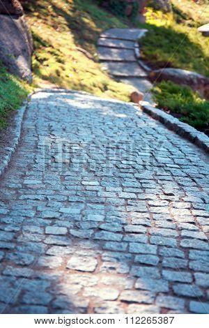 Cobblestone path in a park