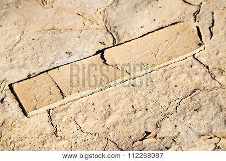 Brown Dry Sand In Sahara Wood