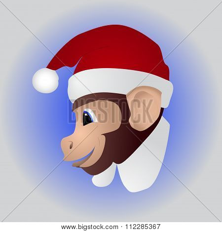 New year a cute monkey