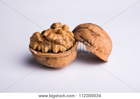 Wallnut Macro Isolated On White Background