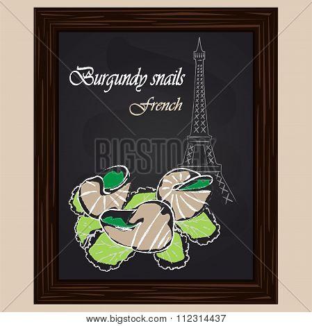 Burgundy Snail On Salad Leaves