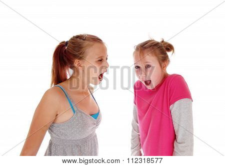 Two Sisters Screaming At Each Other.