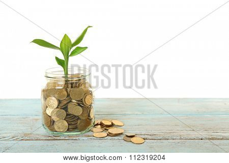 Money and growing sprout in glass jar on table