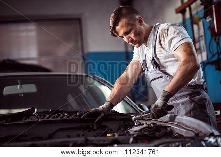 Muscled Car Mechanic