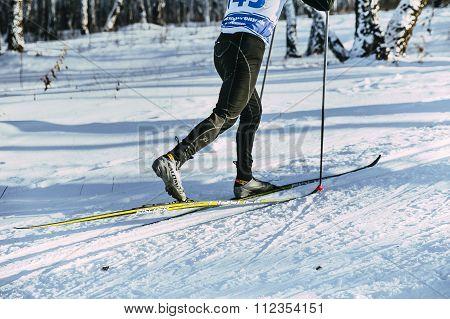 legs skier athlete winter birch wood classic style