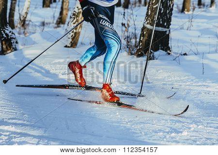 closeup legs skier athlete winter wood classic style