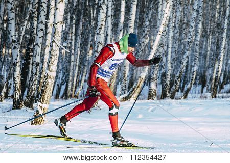 closeup skier athlete winter birch forest sprint race in classic style