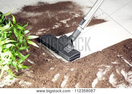 Vacuum cleaning after falling flower pot on a tiled floor
