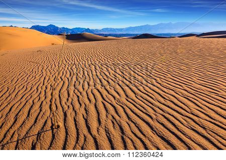 Sunny morning in a picturesque part of Death Valley. Thin waves on the sand. Mesquite Flat Sand Dunes